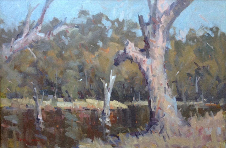 'River Gums' byRay Hewitt, Winner Spring 2015