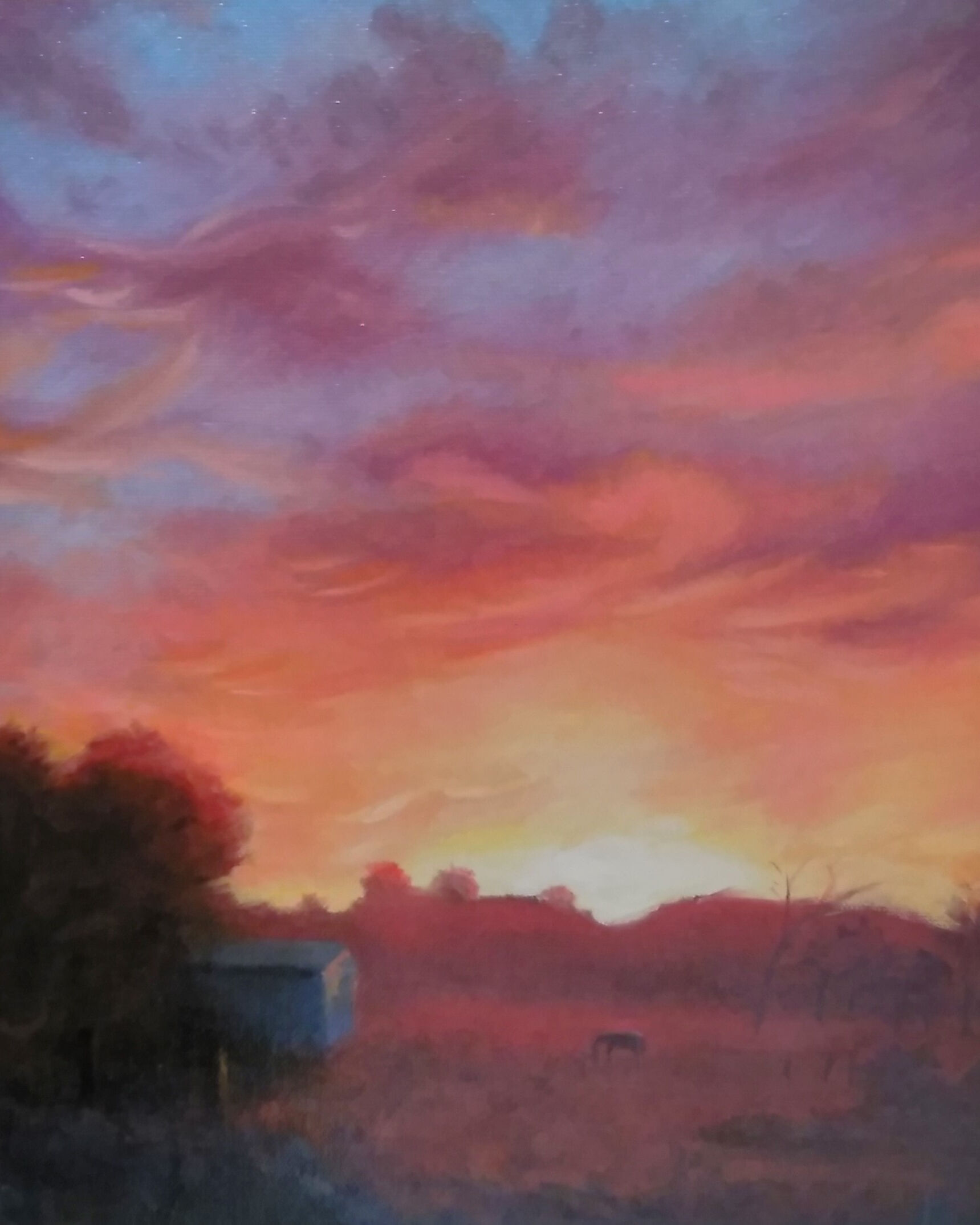 Lukas Ryan_Sunrise, Yarra Valley