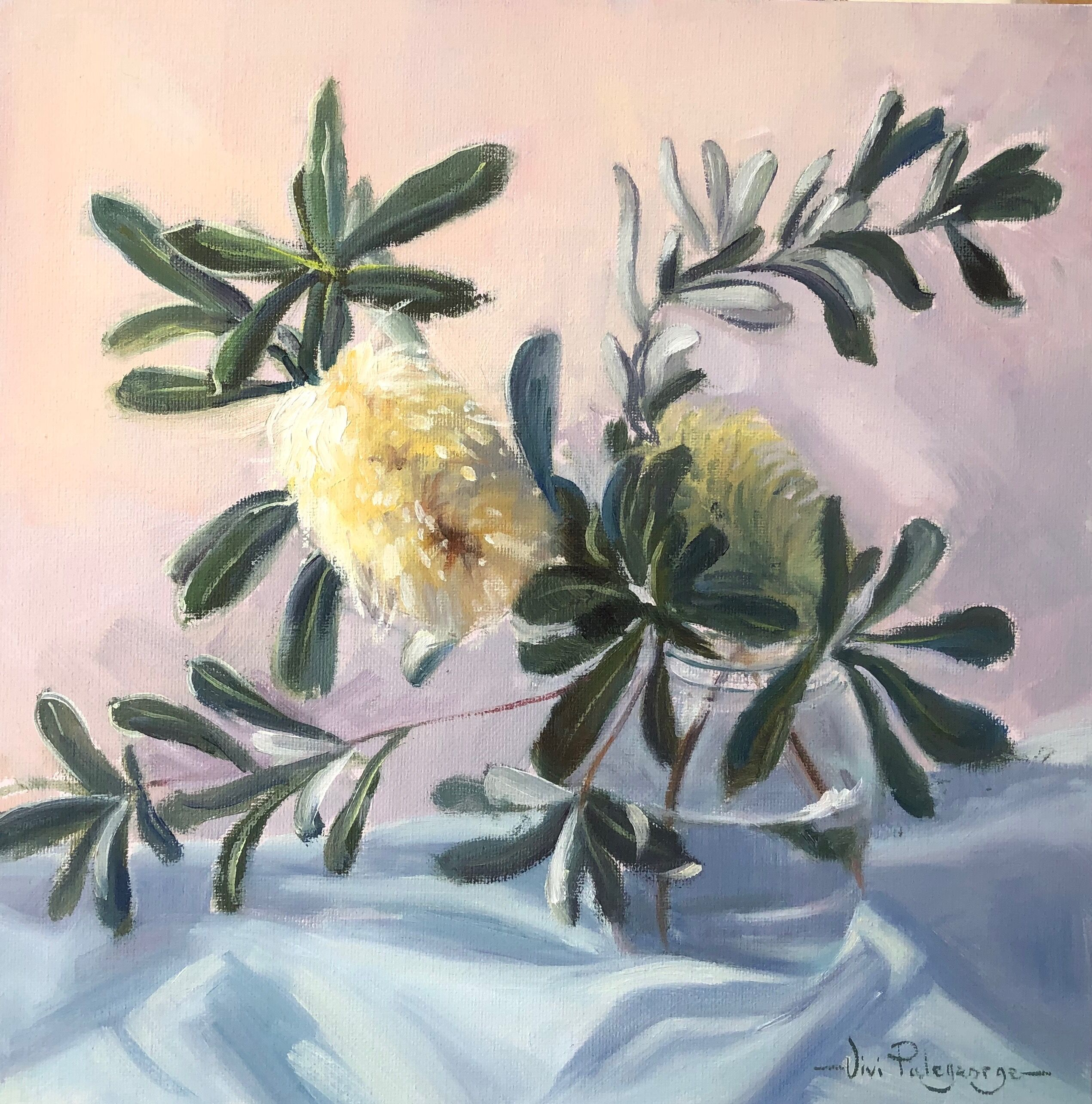Palegeorge%20vivi-Banksia%20Love.%20Oil.%2030%20x%2030cm.%20