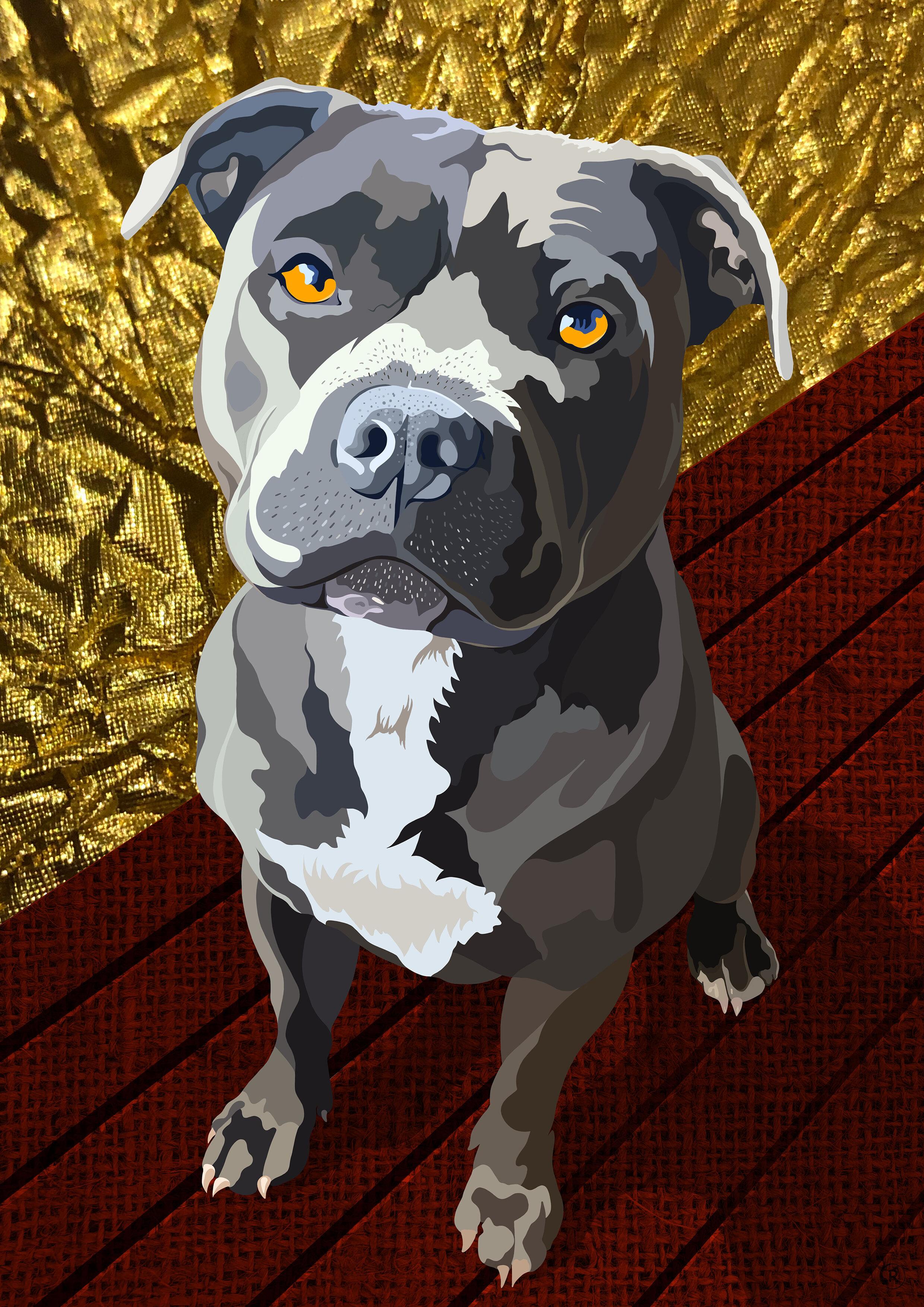 Dog Enzlo A4