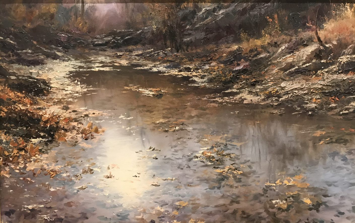 'Reflection' by Faramarz Mokhtarpour, Winner 2017