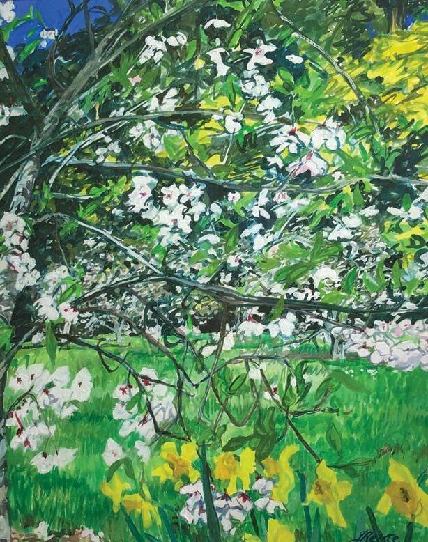 Jo Reitze rhodedendron Garden 2