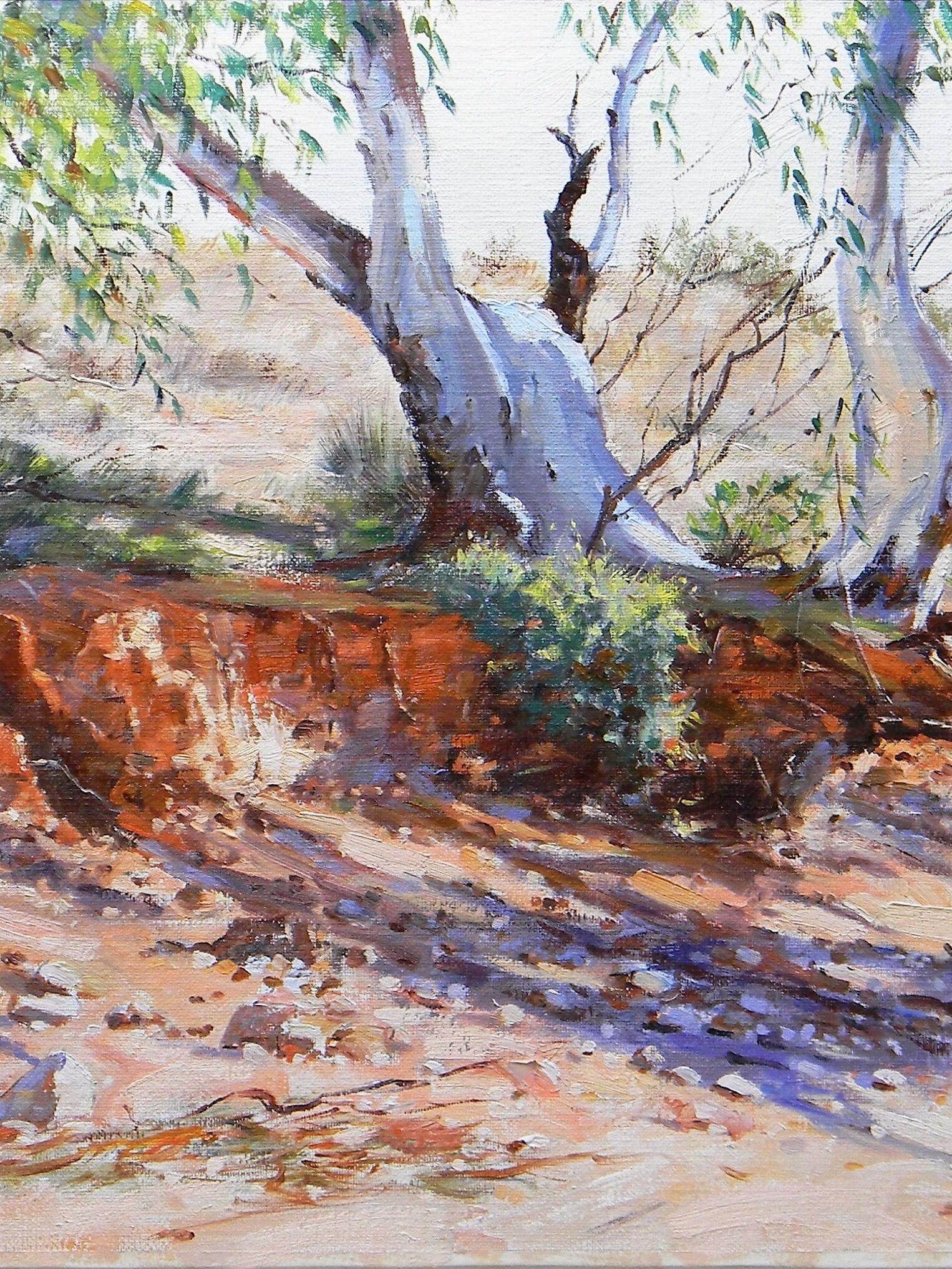 Adrian Johnson Creek Bed Shadows Flinders Ranges. Oil