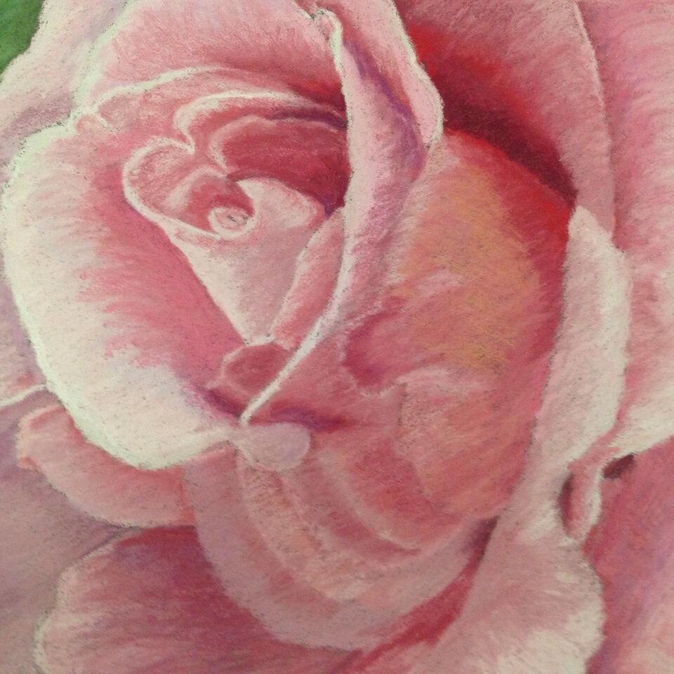 38A_Christine Denny_Pink Splendour_Pastel
