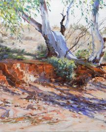 Adrian Johnson Creek Bed Shadows Flinders Ranges. Oil