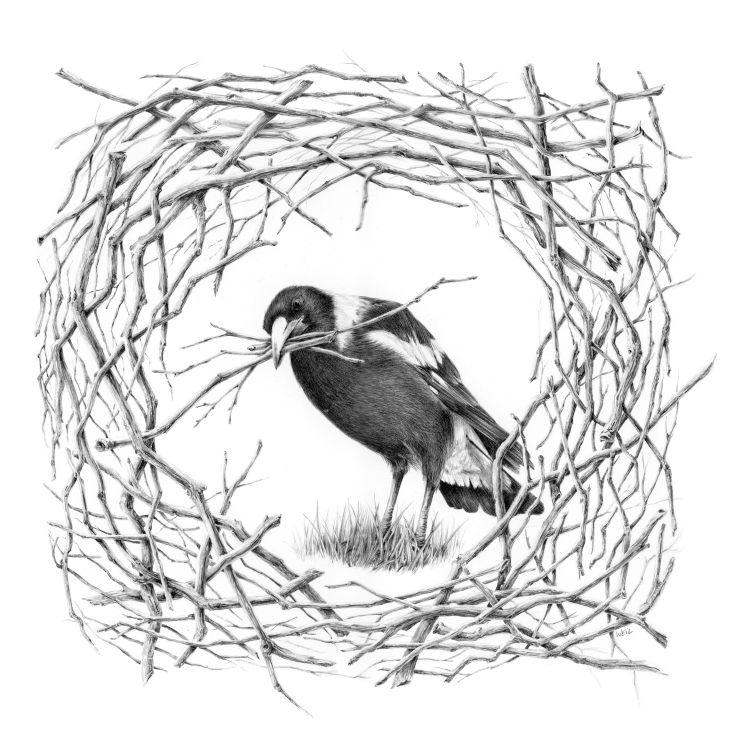 NestingSeason_MR