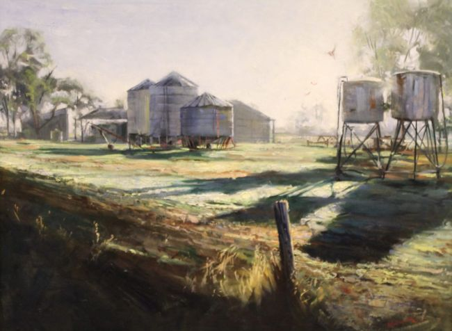 'Early Morning at Borung' by Ben Winspear, Winner 2016