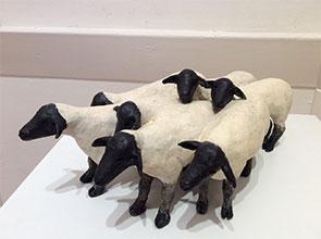 295-19-AOTY-EllenJenkins-sheep