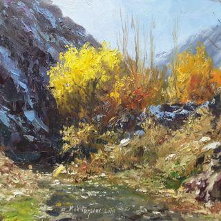 Faramarz Mokhtarpour_ Colourful Autumn