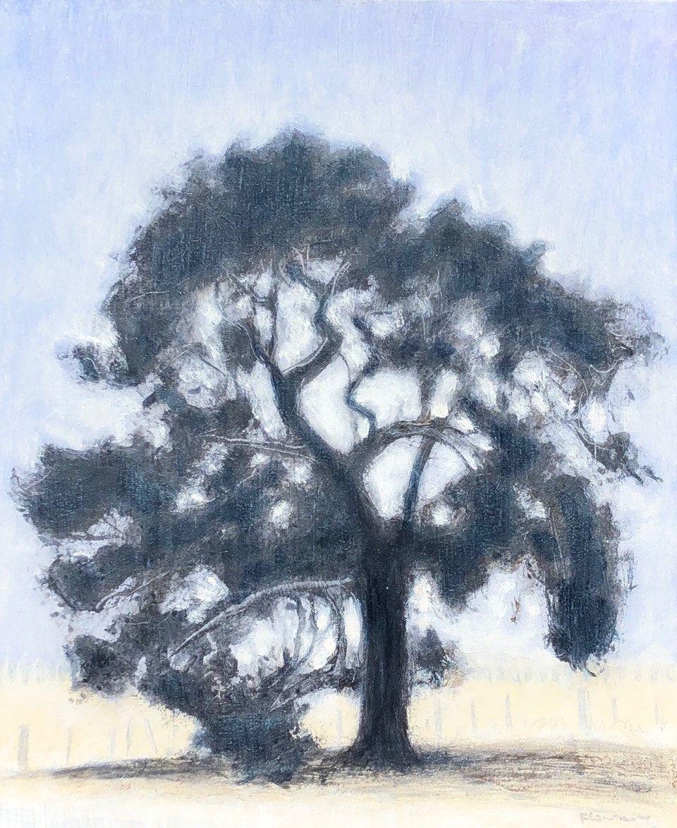Jane Flowers_Pine Treee Queenscliff Road