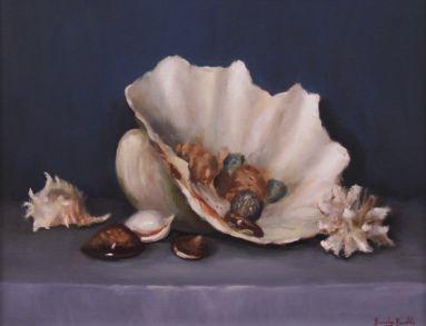 40a_Beverley_Braddy_Seashells_Seashells_500 copy
